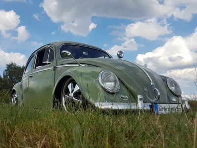 1955 VW Käfer RHD Ovali in Olivgrün